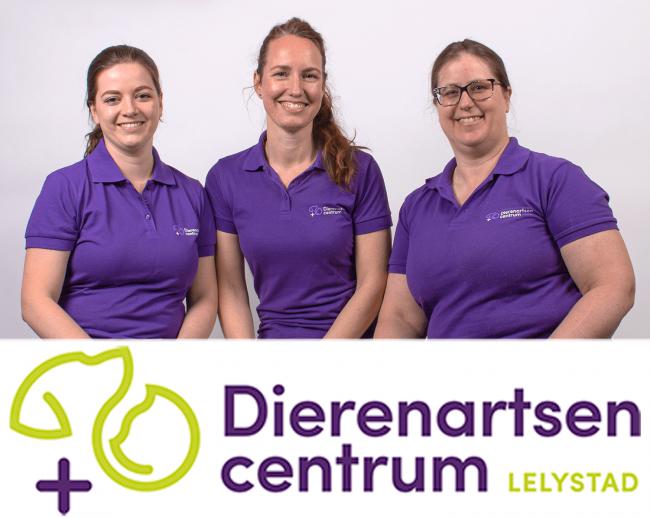vlnr: Chantal van der Poel, Marloes van Harsselaar en Deborah Heemskerk